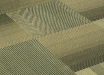 hunter-floor-trends-carpet-tiles